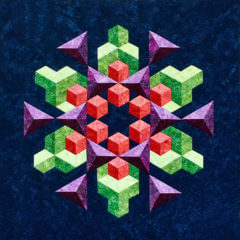 Space Crystal by Pamela Dittmer. Won 1st place in Small Quilts - Machine Quilted by Exhibitors Category at the Douglas County Fair.